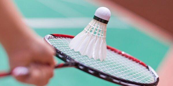 Bekijk alle producten over Badminton